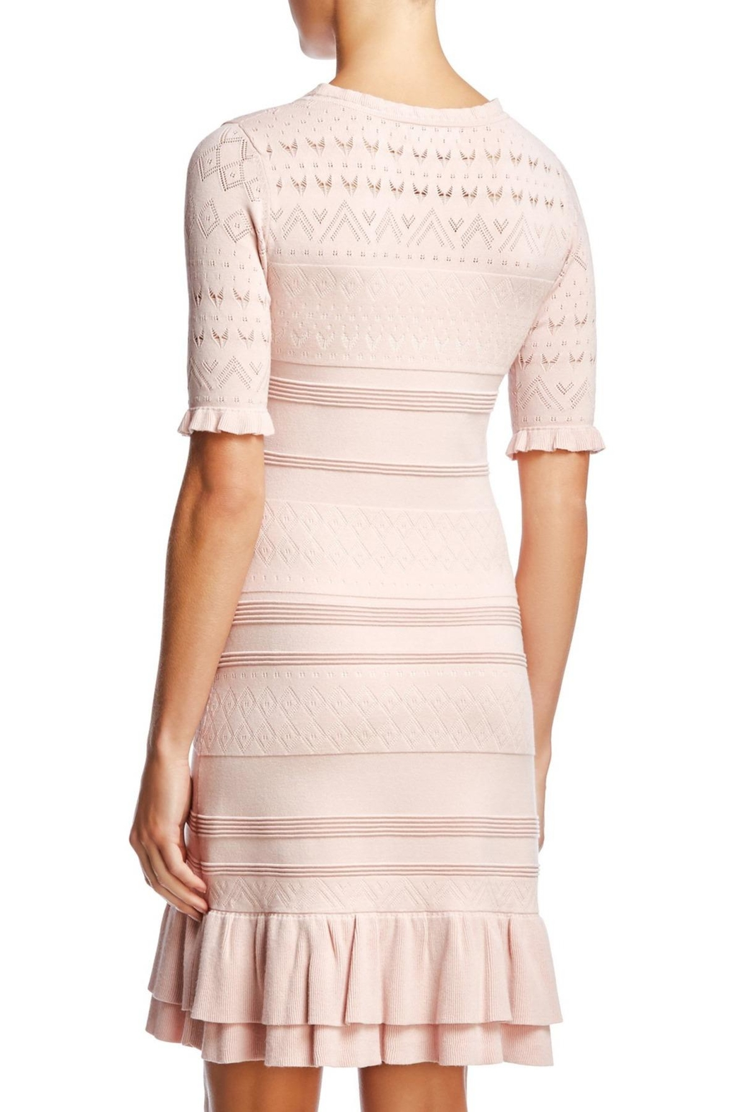Bailey 44 Feminine Knit Dress - Side Cropped Image