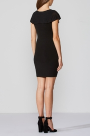 Bailey 44 Soft Focus Dress - Back cropped