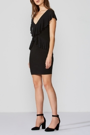 Bailey 44 Soft Focus Dress - Front full body