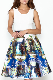 Banjul Pleated Print Skirt - Product Mini Image