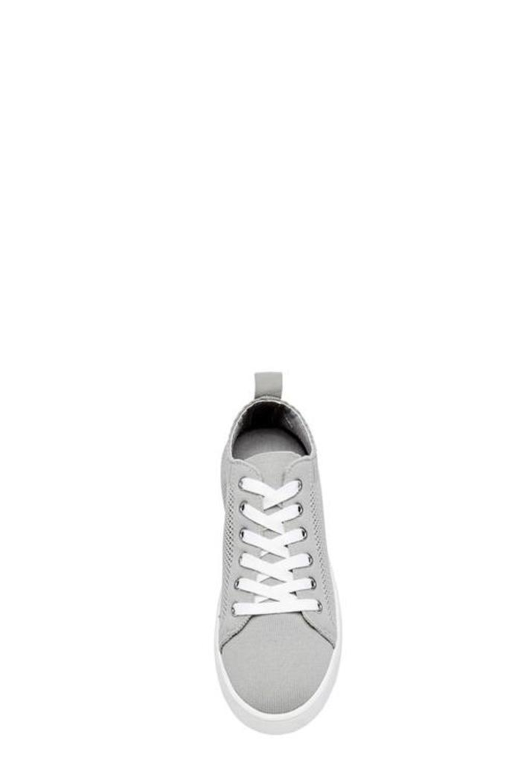 bbda374eea8 Steve Madden Bardo Sneaker from New York by Luna — Shoptiques