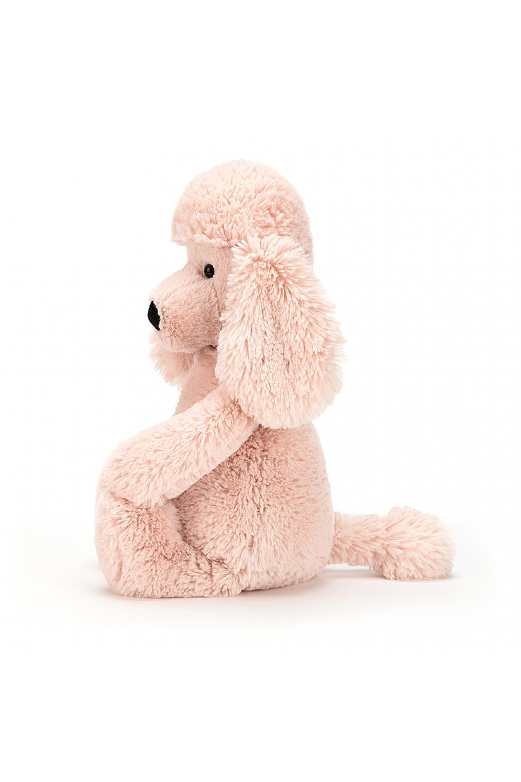 Jelly Cat Bashful Poodle Small - Front Full Image