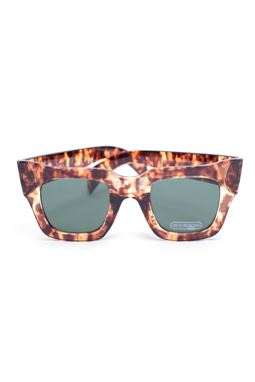 Ocean and Land Bat Wing Sunglasses - Main Image