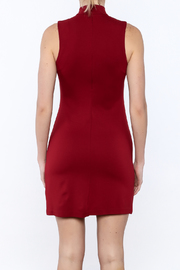 BB Dakota Bales Mini Dress - Back cropped