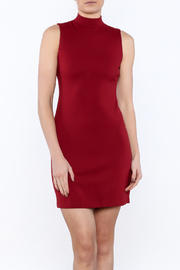 BB Dakota Bales Mini Dress - Front cropped