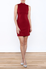 BB Dakota Bales Mini Dress - Front full body