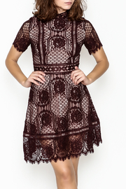 BB Dakota Lace Overlay Dress - Front cropped
