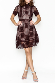 BB Dakota Lace Overlay Dress - Side cropped