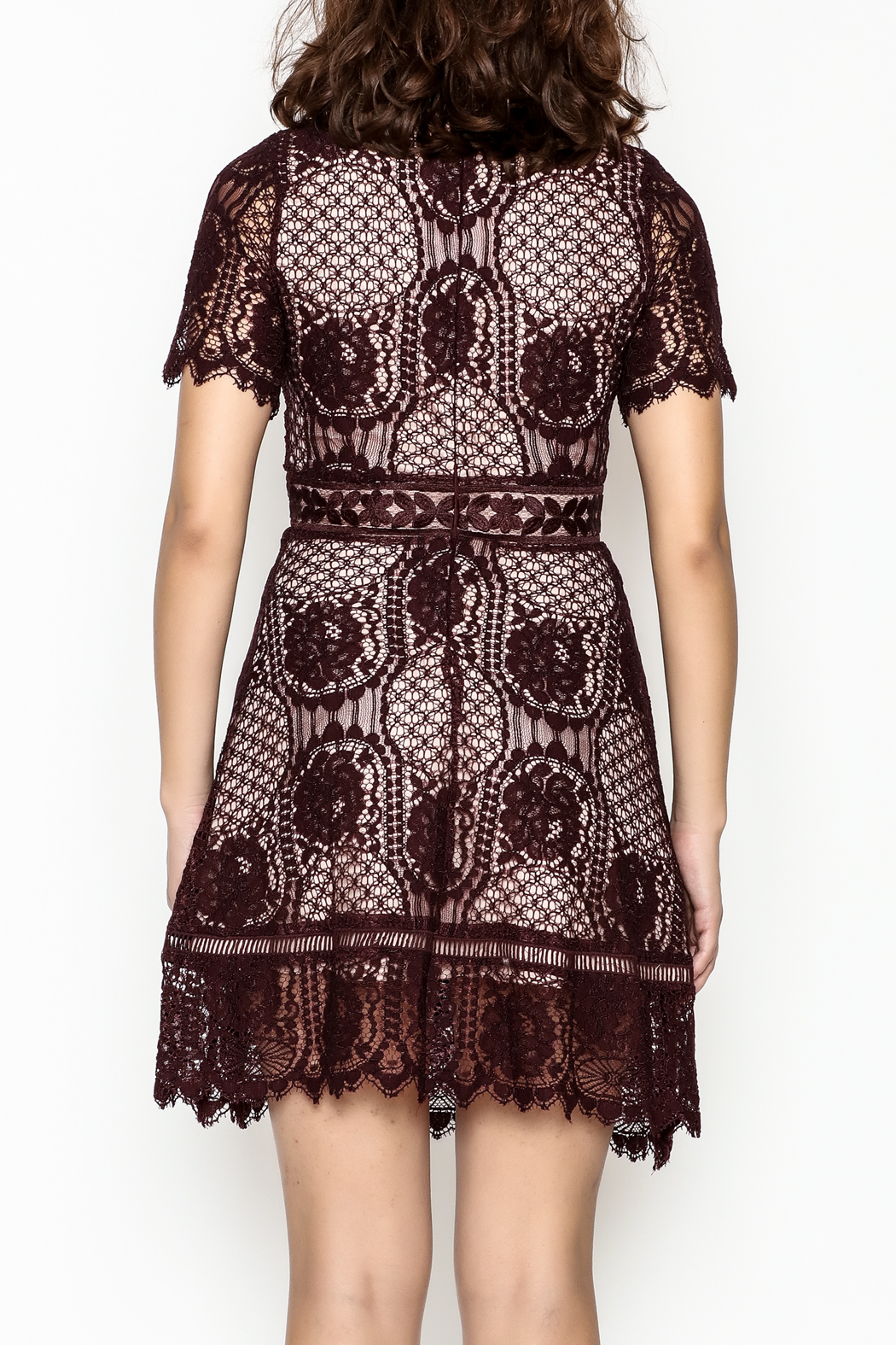 BB Dakota Lace Overlay Dress - Back Cropped Image