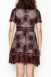 BB Dakota Lace Overlay Dress - Back cropped