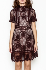 BB Dakota Lace Overlay Dress - Front full body