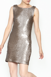 BB Dakota Sequin Shift Dress - Product Mini Image
