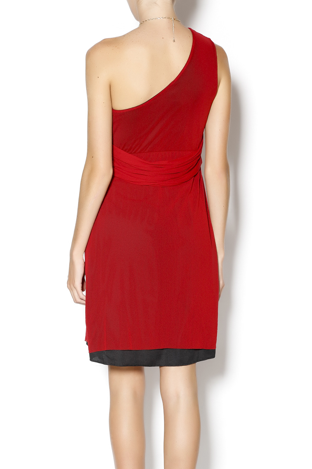 Sweet Pea Pleated One Shoulder Dress - Back Cropped Image