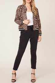 BB Dakota Cat Fight Bomber - Front cropped