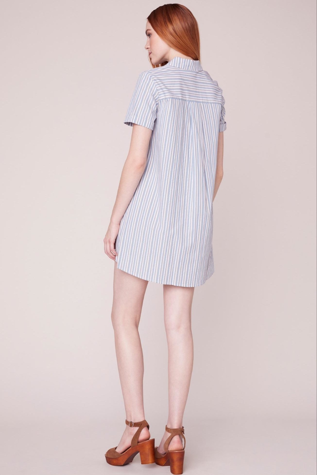 BB Dakota Striped Shirt Dress - Side Cropped Image