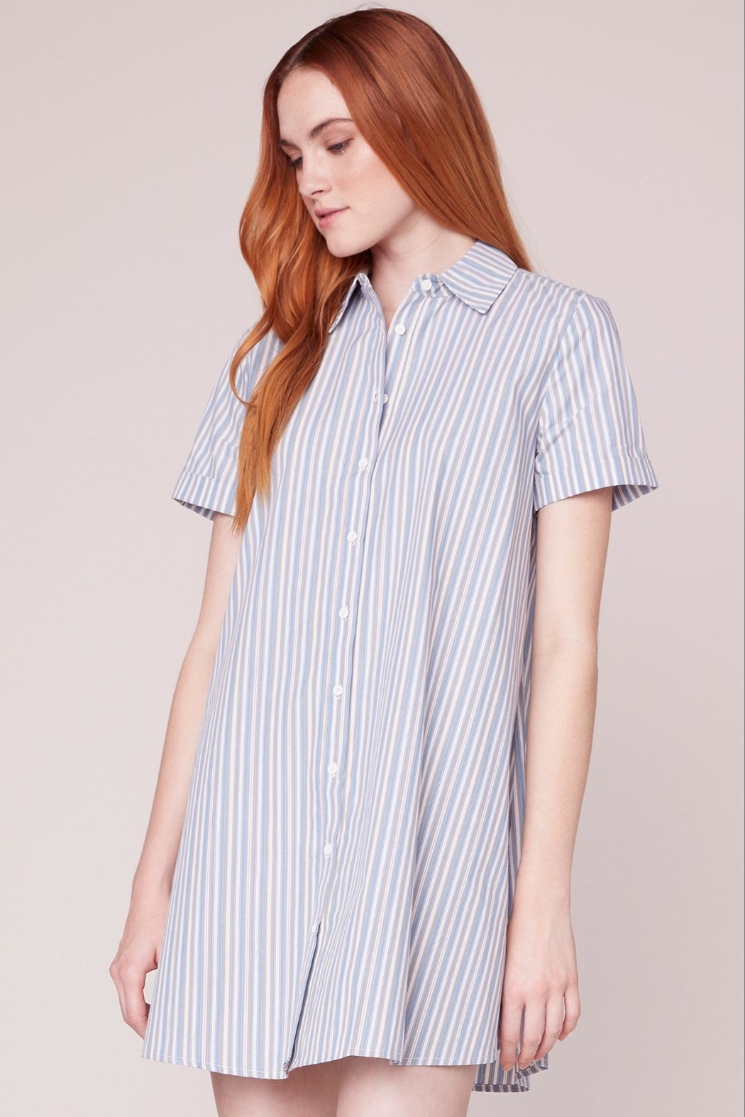BB Dakota Striped Shirt Dress - Front Cropped Image