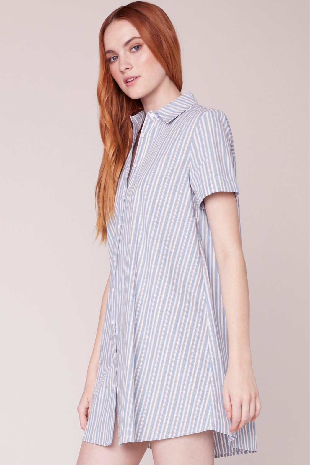 BB Dakota Striped Shirt Dress - Front Full Image