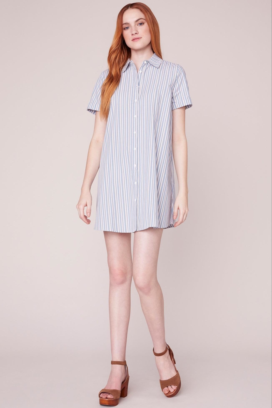 BB Dakota Striped Shirt Dress - Back Cropped Image