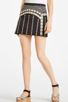 Shoptiques Product: Lannia Embroidered Miniskirt