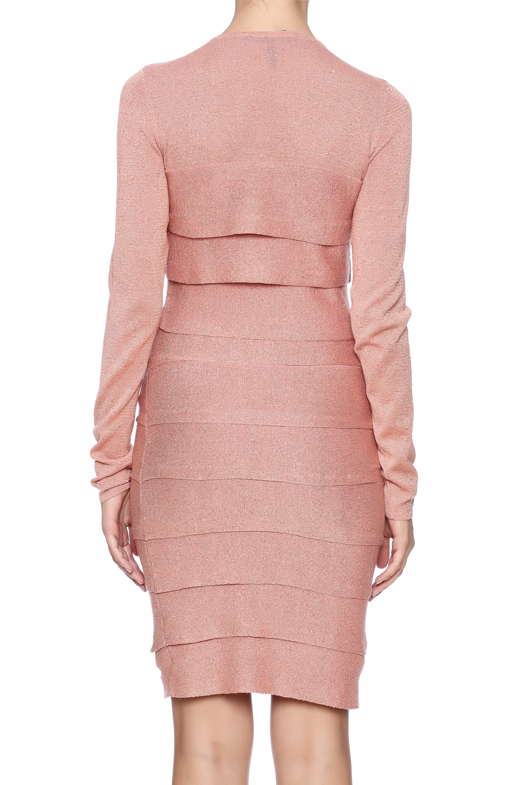 BCBG Max Azria Mariah Dress - Back Cropped Image