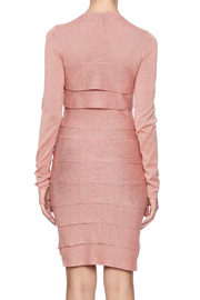 BCBG Max Azria Mariah Dress - Back cropped