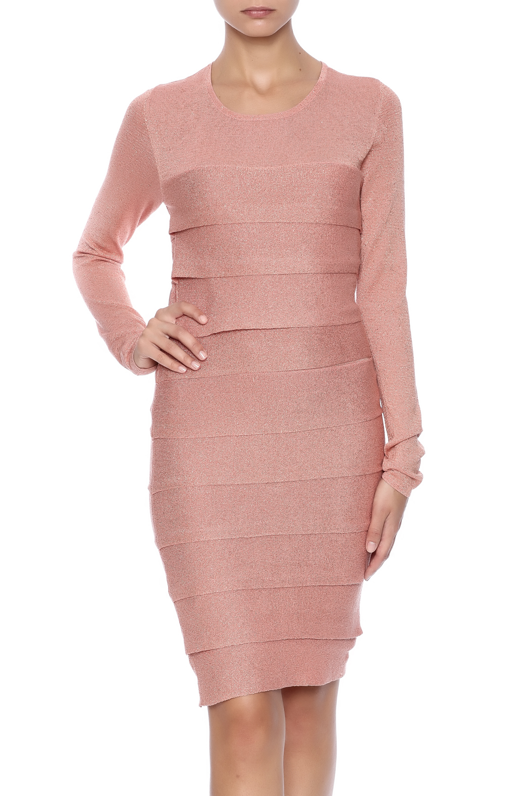 BCBG Max Azria Mariah Dress - Main Image