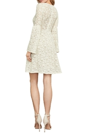 BCBG Max Azria Floral Lace A-Line - Front full body