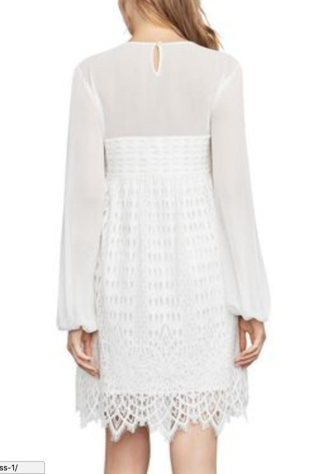 BCBG Max Azria Lace Dress - Front Full Image