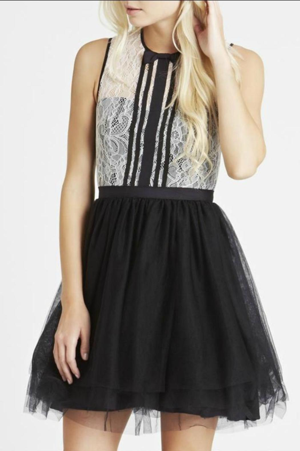 BCBGeneration Lace/tulle Dress - Front Full Image