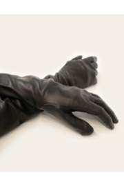 Cynthia Rowley Bea Long Leather Gloves - Front full body