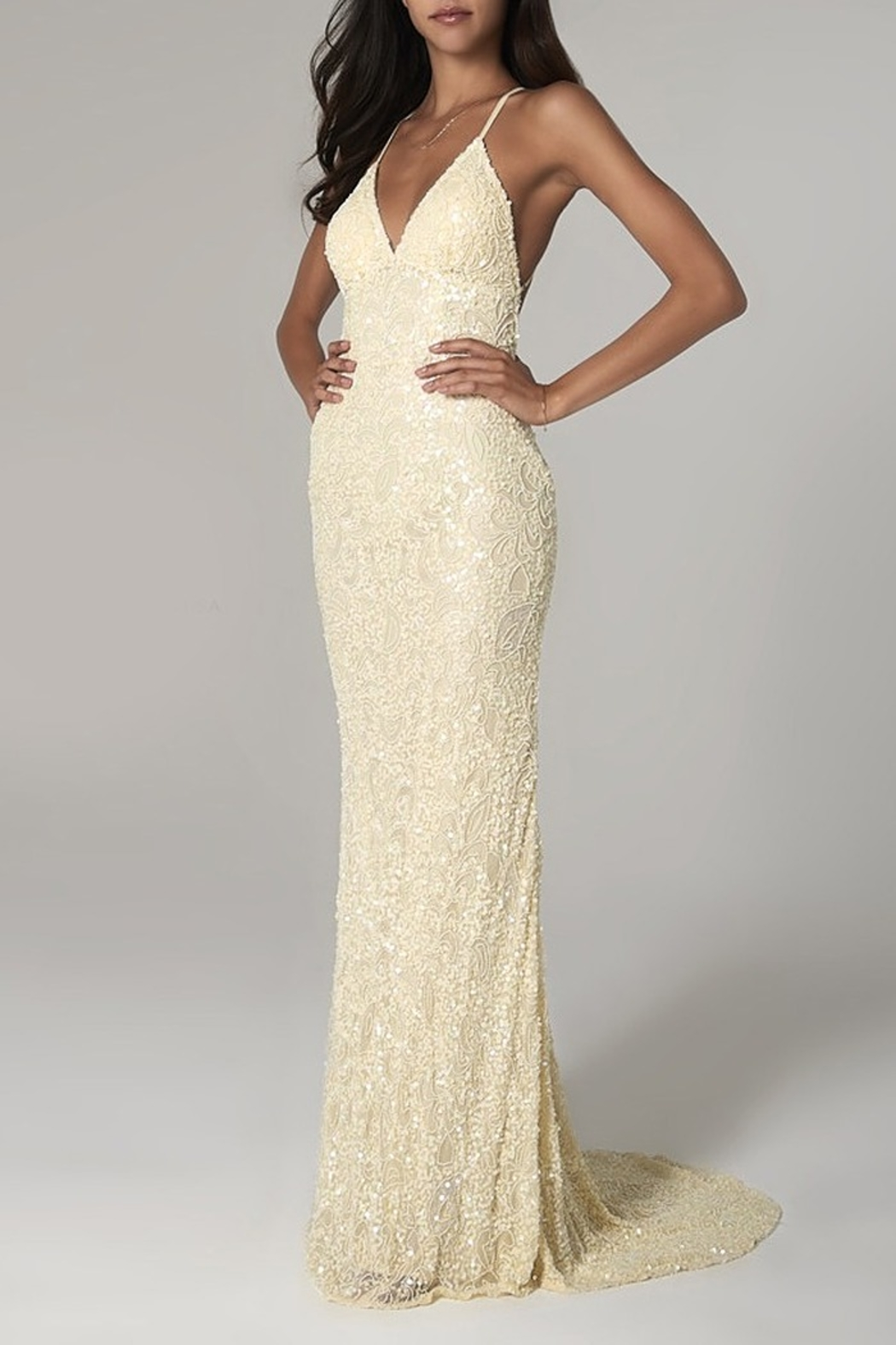Scala Beaded Paisley Gown w/Low Crisscross Back - Front Cropped Image