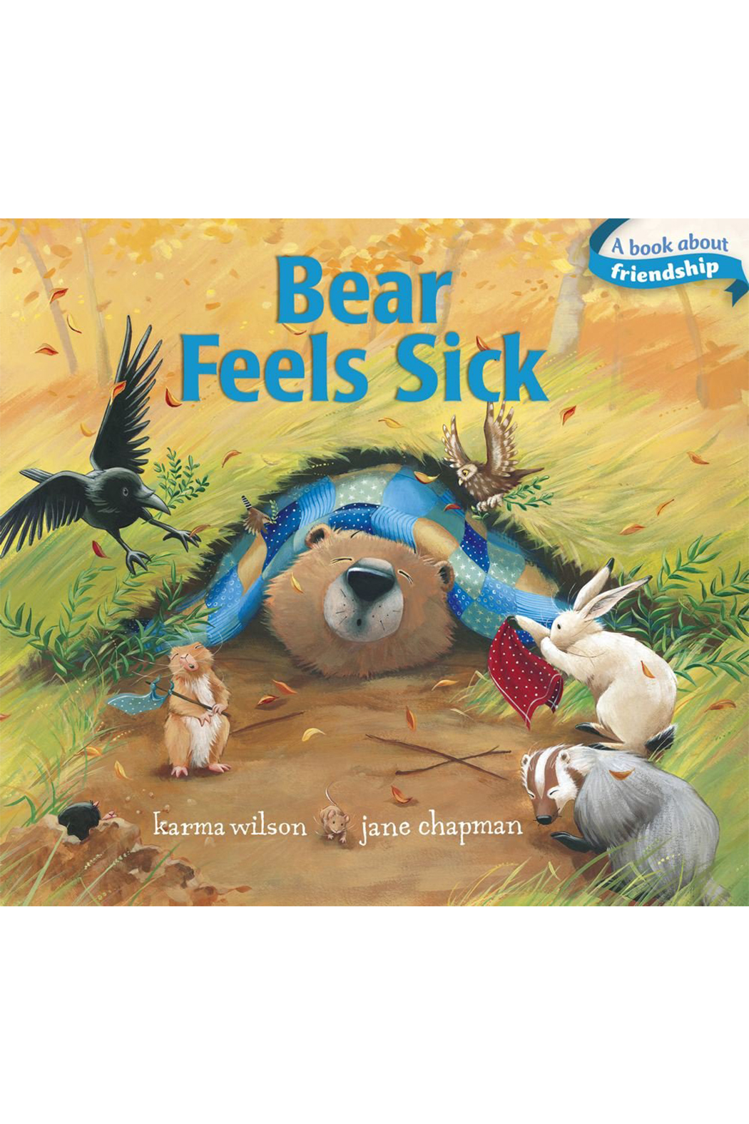 Simon & Schuster Bear Feels Sick - Front Cropped Image