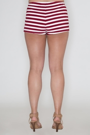 Bear Dance American Flag Shorts - Back cropped