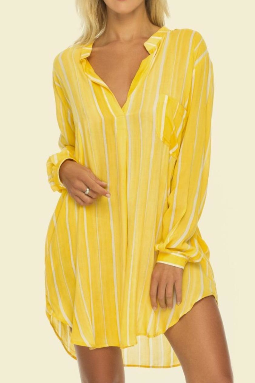 Indah Bee Striped Tunic - Front Cropped Image