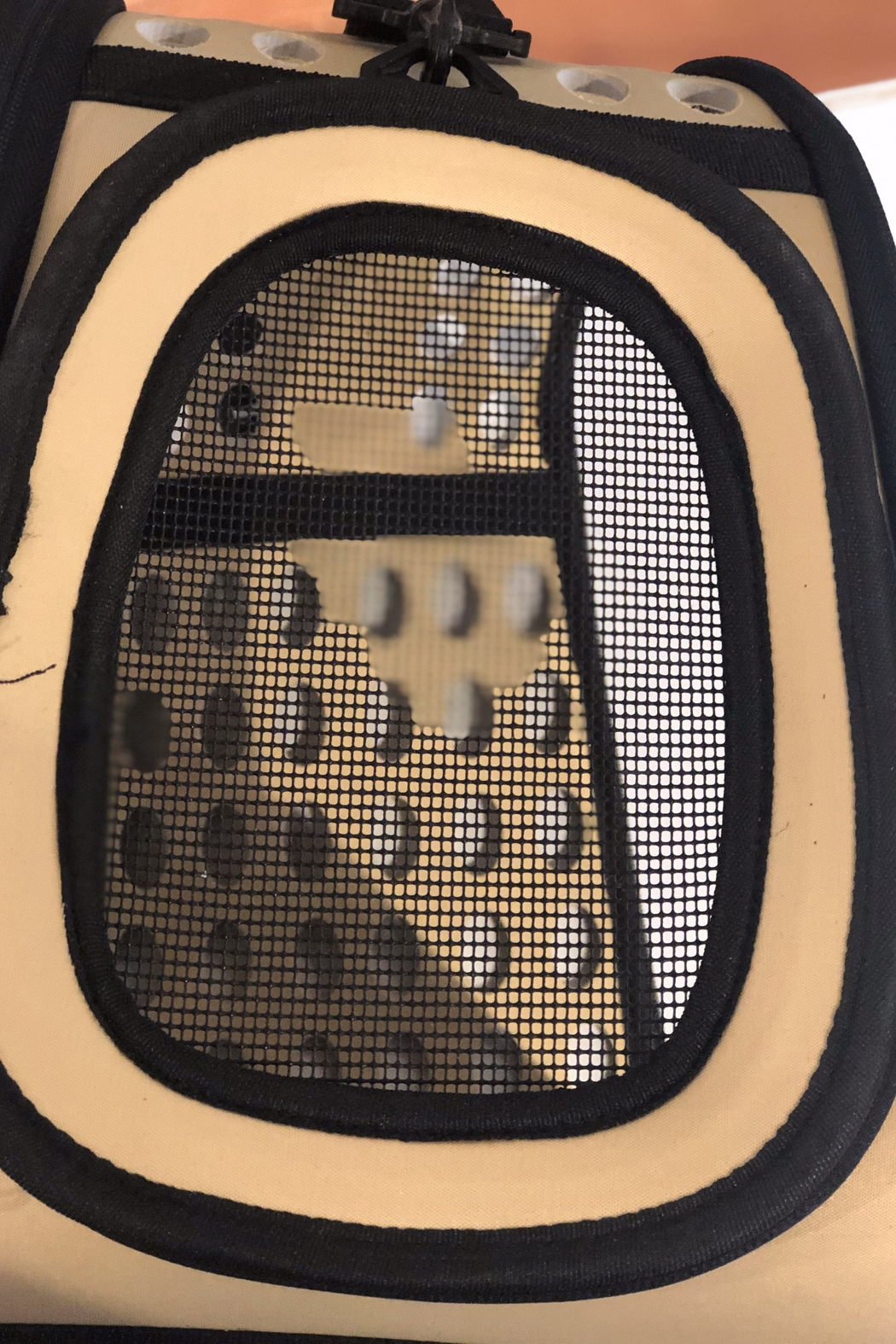 Unbranded Beige Collapsible Pet Carrier - Back Cropped Image