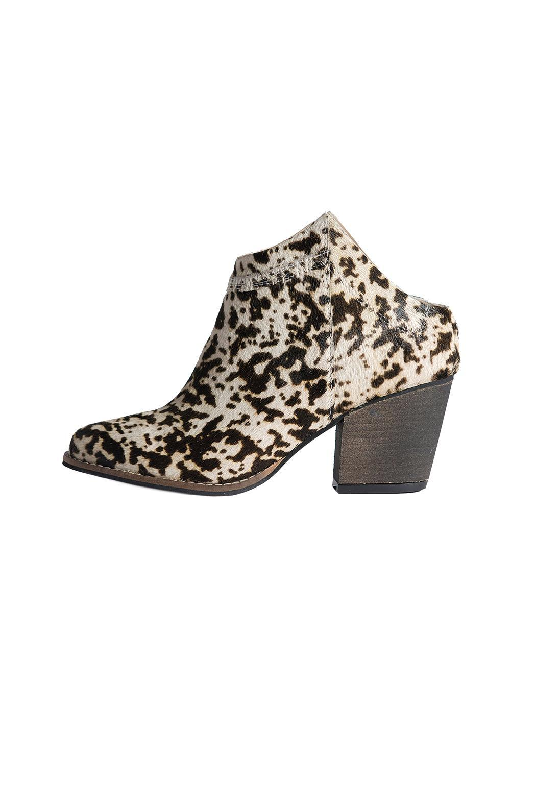 Bel Carril Roger Bootie - Front Cropped Image