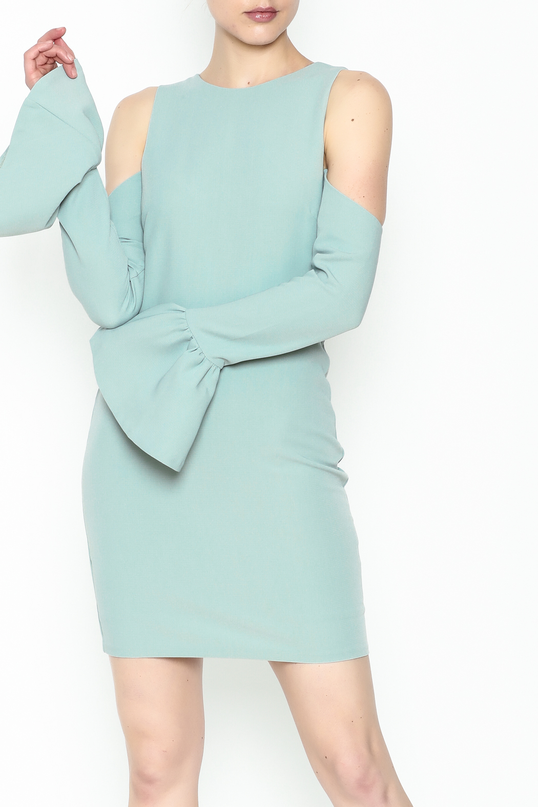 Endless Rose Bell Sleeve Dress - Front Cropped Image
