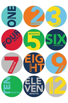 Shoptiques Product: Milestone Stickers