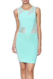 Belle Femme Fashions Mesh Contrast Dress - Product Mini Image