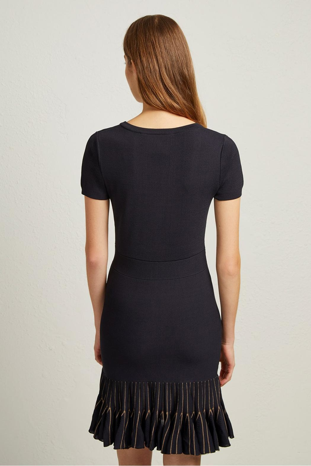 French Connection Beth Knit Dress - Back Cropped Image