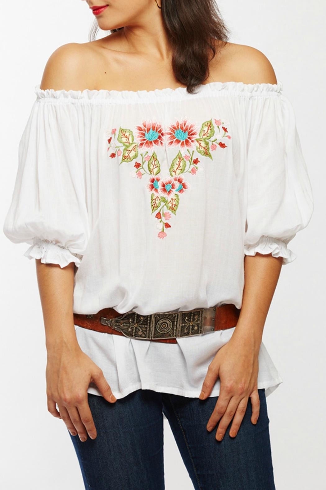 Beth Friedman Embroidered Tunic Top - Main Image