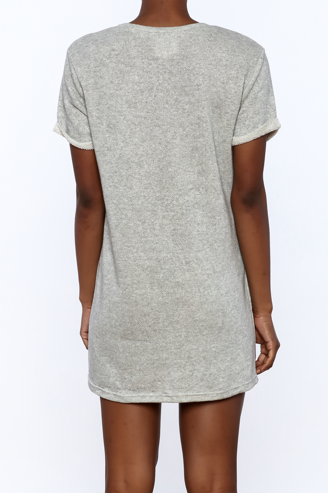 Better Be Grey Embroidered Dress - Back Cropped Image