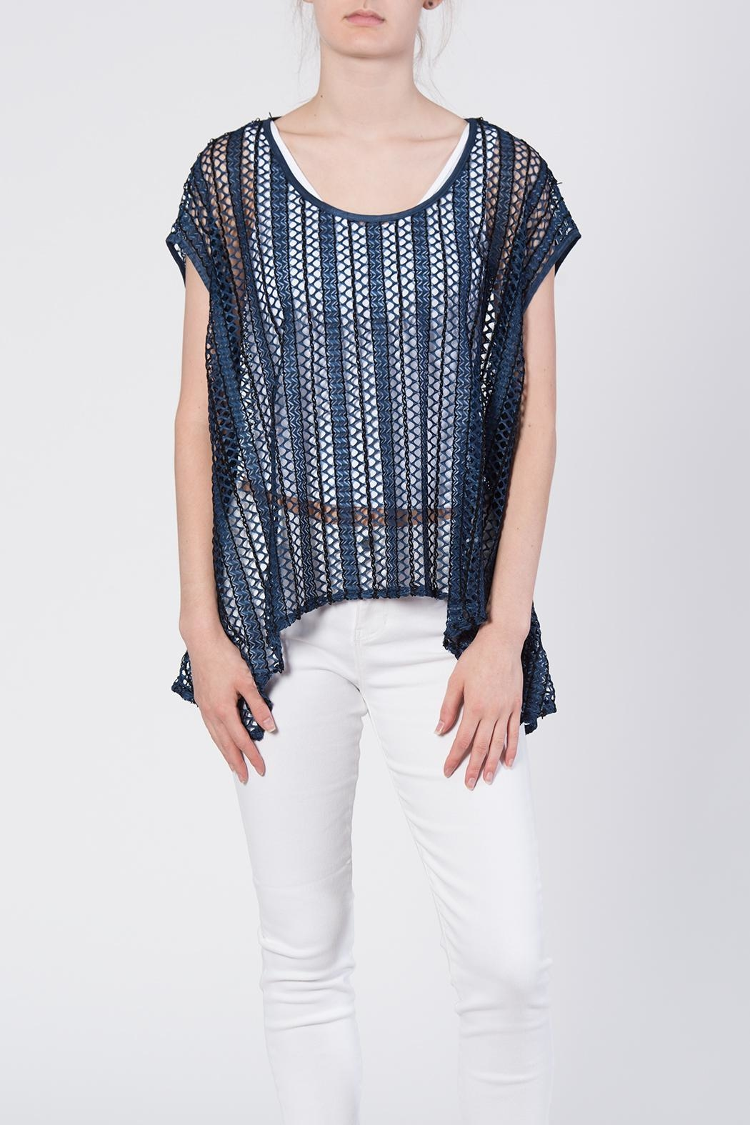 beulah Sheer Knit Top - Main Image