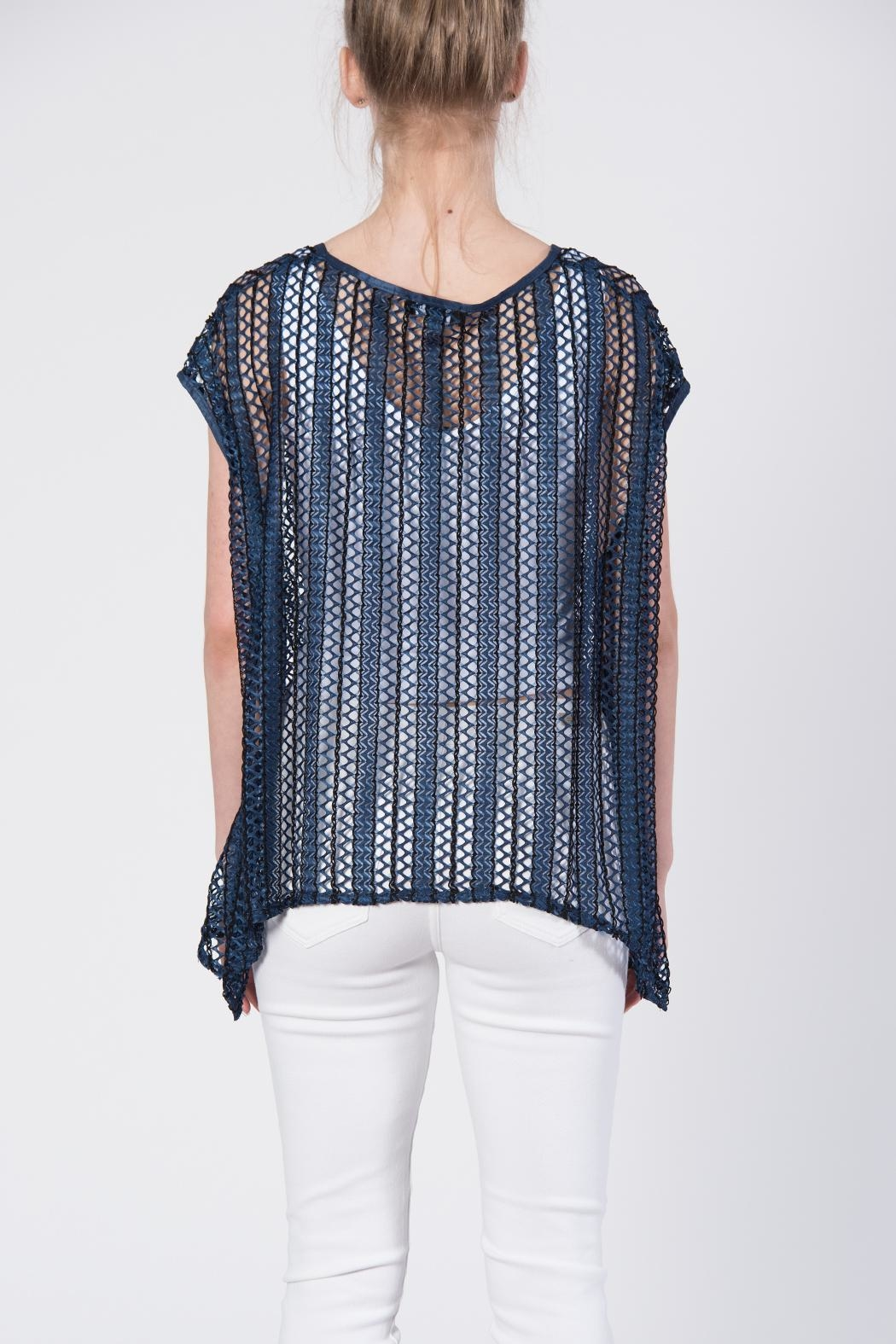 beulah Sheer Knit Top - Side Cropped Image