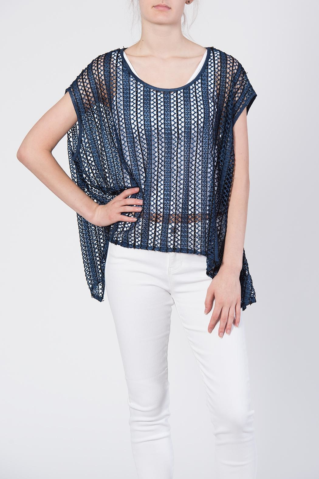 beulah Sheer Knit Top - Front Full Image