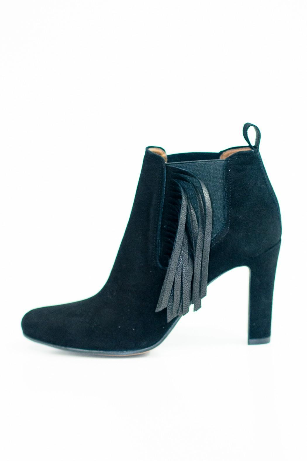Bianca Di Fringe Ankle Booties Black - Front Cropped Image