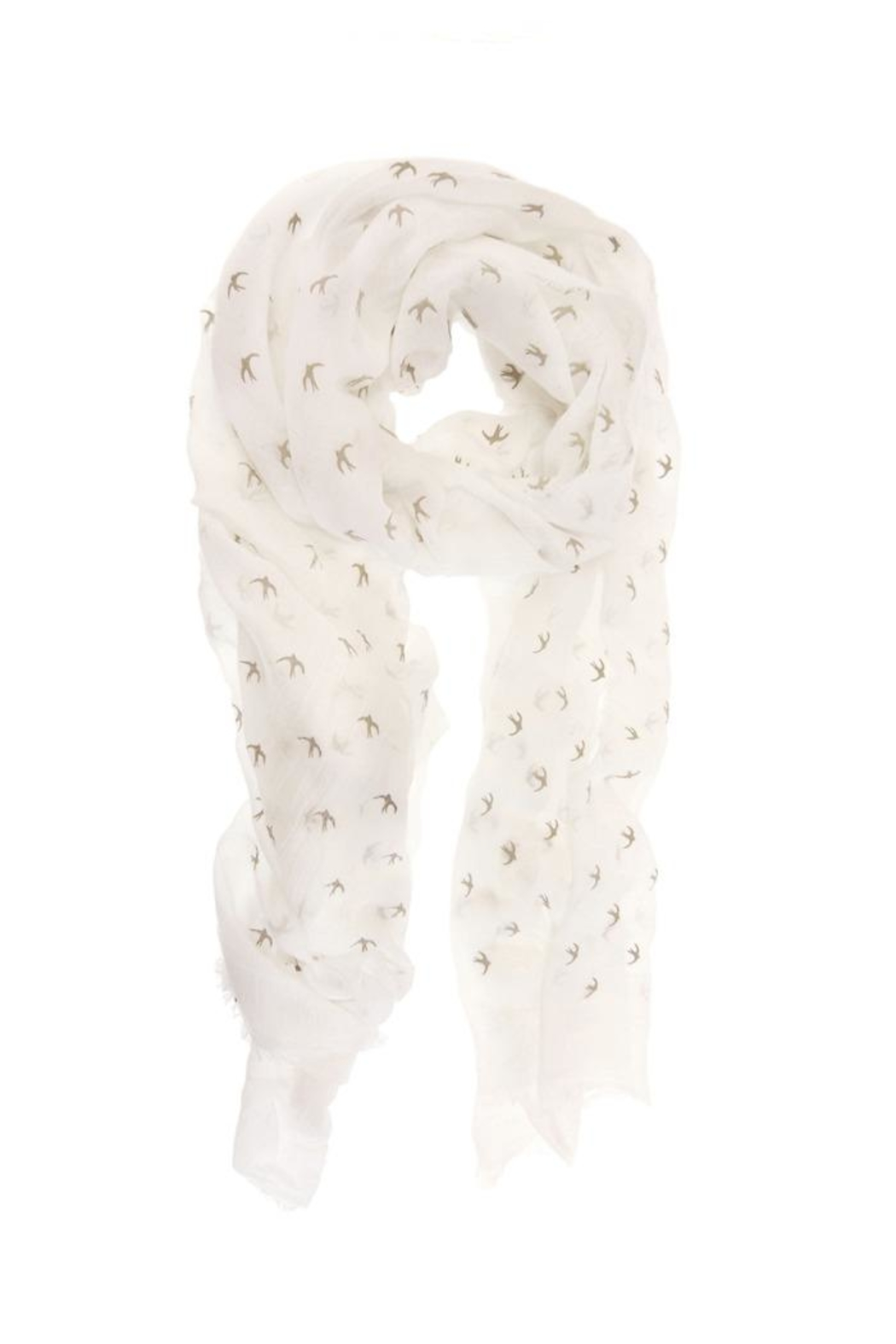 Joy Susan Accessories Bird Print Scarf - Front Cropped Image