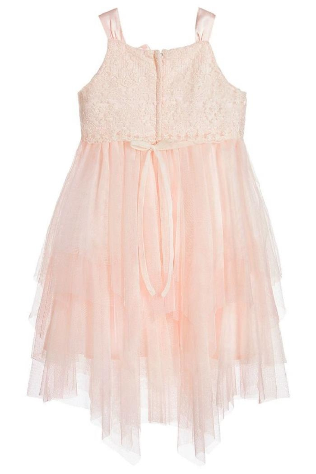 Biscotti Netting Tiered Dress - Front Full Image