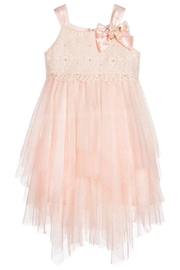 Biscotti Netting Tiered Dress - Front cropped