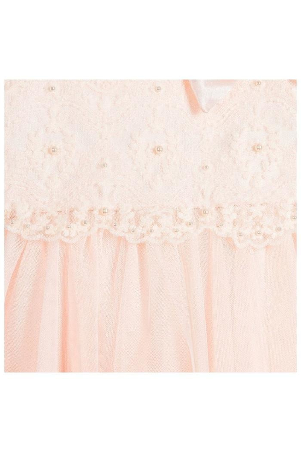Biscotti Netting Tiered Dress - Side Cropped Image